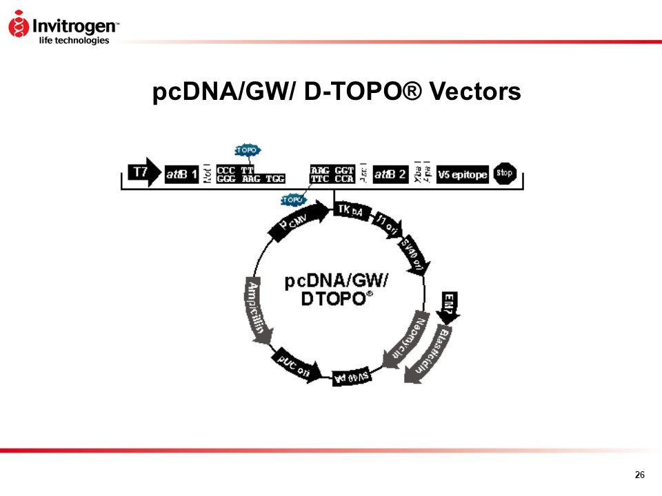 26 pcDNA/GW/ D-TOPO® Vectors
