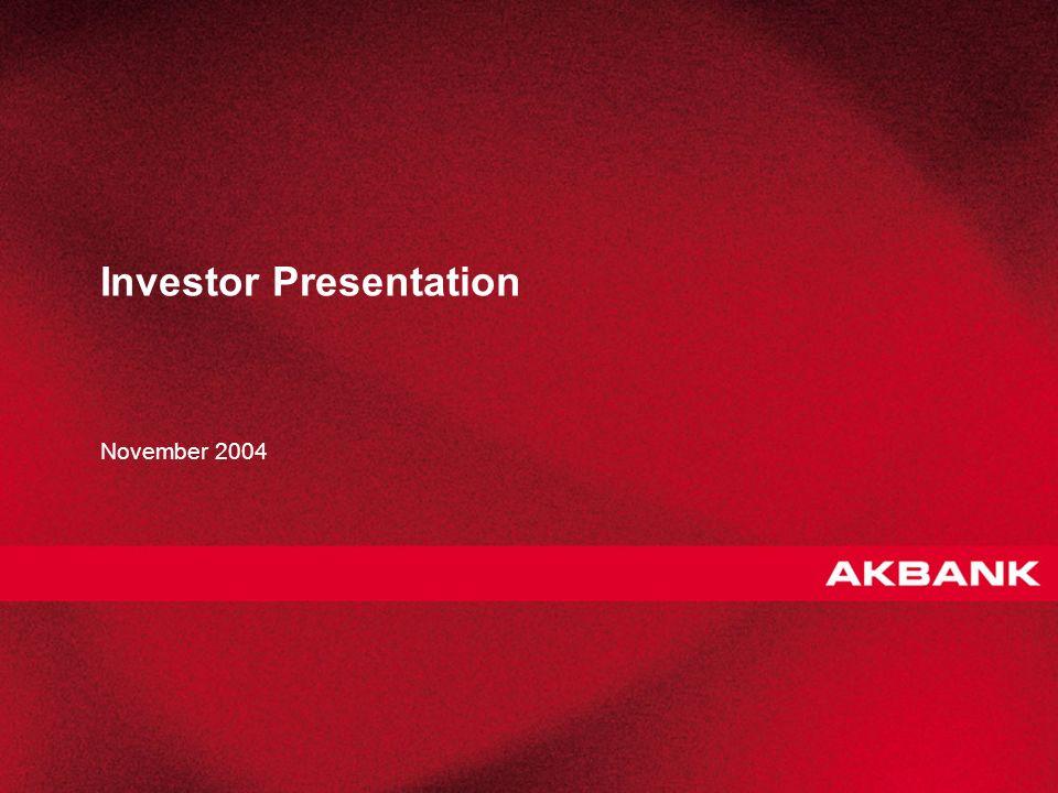 1 Investor Presentation November 2004