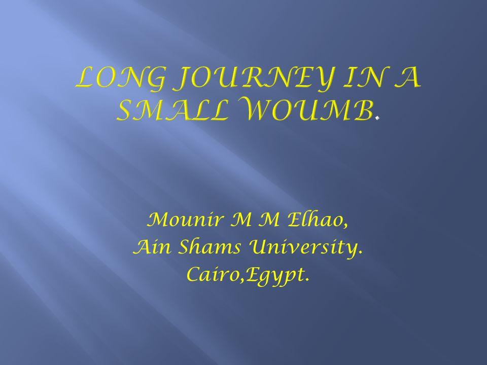 Mounir M M Elhao, Ain Shams University. Cairo,Egypt.