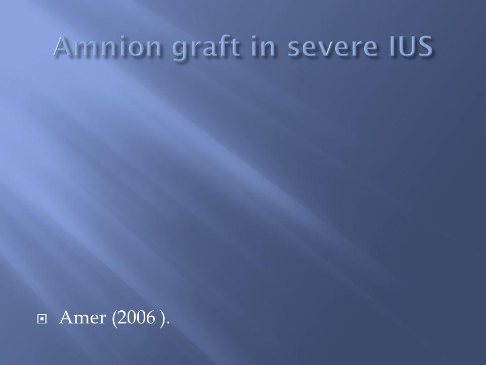 Amer (2006 ).