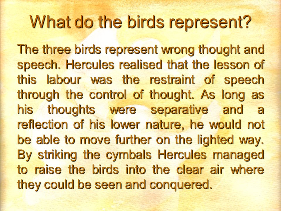 What do the birds represent. The three birds represent wrong thought and speech.
