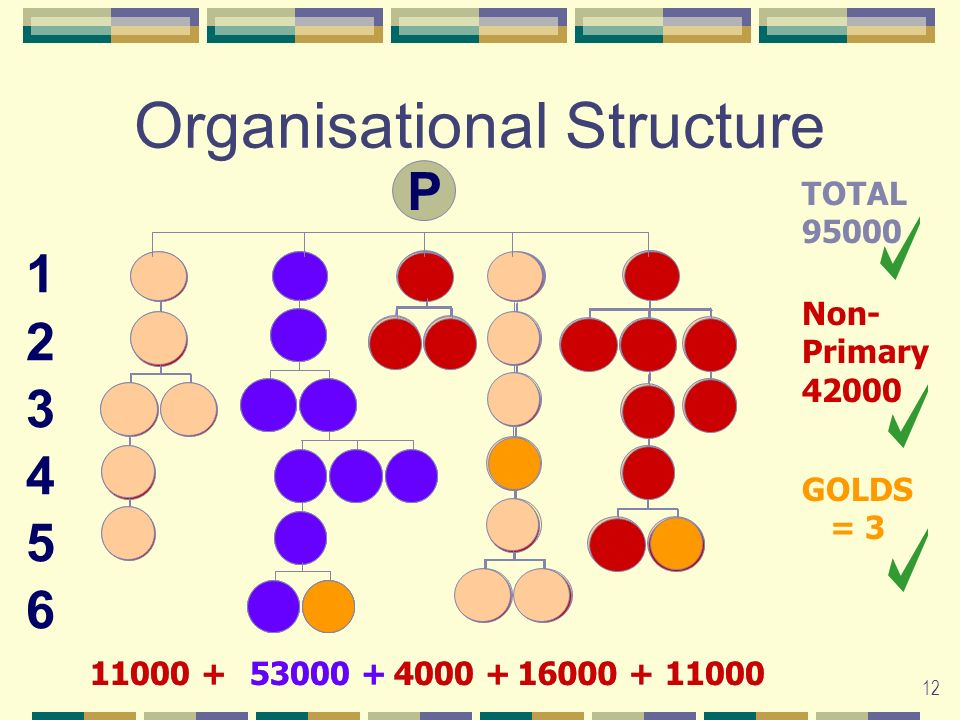 12 P Organisational Structure 53000 +11000 +4000 +16000 +11000 123456123456 TOTAL 95000 53000 +11000 +4000 +16000 +11000 Non- Primary 42000 GOLDS = 3