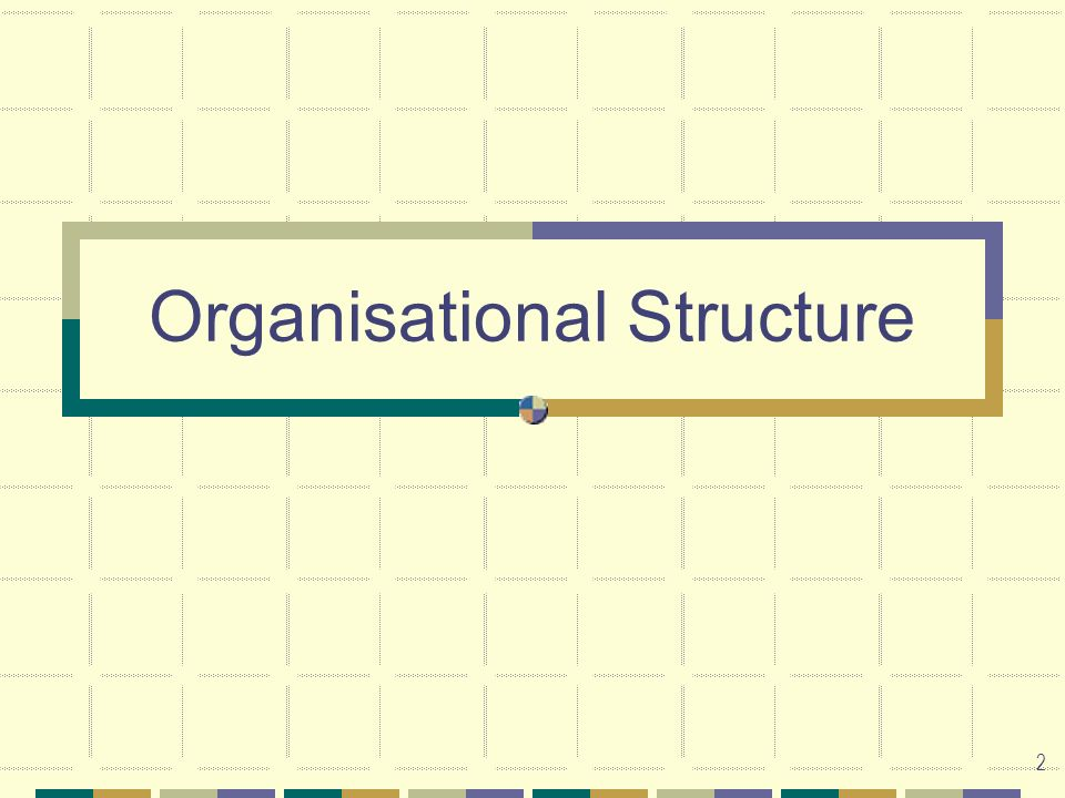 2 Organisational Structure