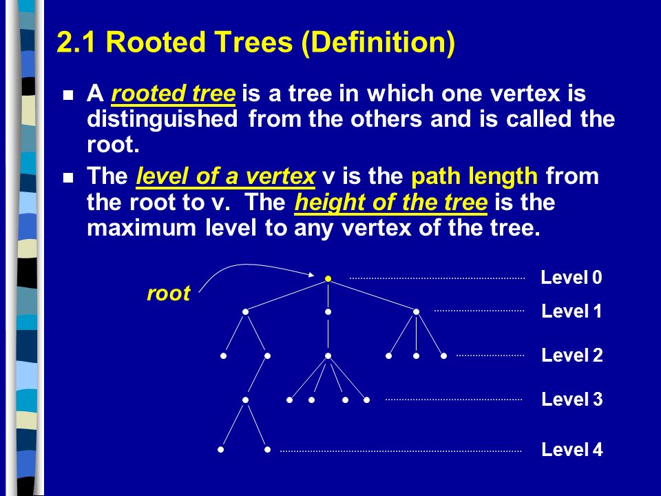 2.1 Rooted Trees (Definition) n A rooted tree is a tree in which one vertex is distinguished from the others and is called the root.