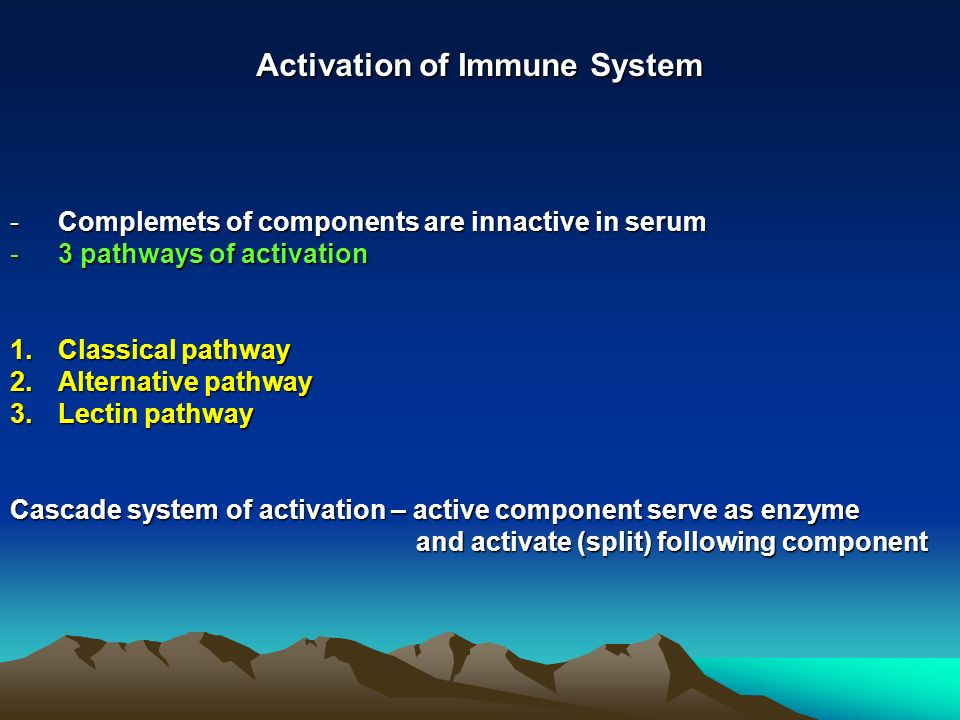 Activation of Immune System -Complemets of components are innactive in serum -3 pathways of activation 1.Classical pathway 2.Alternative pathway 3.Lectin pathway Cascade system of activation – active component serve as enzyme and activate (split) following component and activate (split) following component