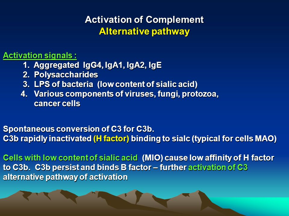 Activation of Complement Alternative pathway Activation signals : 1. Aggregated IgG4, IgA1, IgA2, IgE 1. Aggregated IgG4, IgA1, IgA2, IgE 2. Polysacch