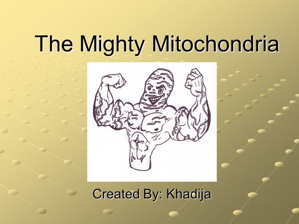 The Mighty Mitochondria Created By: Khadija