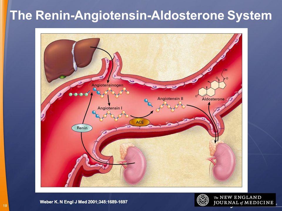 10 Weber K. N Engl J Med 2001;345:1689-1697 The Renin-Angiotensin-Aldosterone System