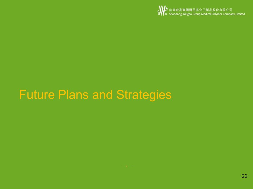 22 Future Plans and Strategies