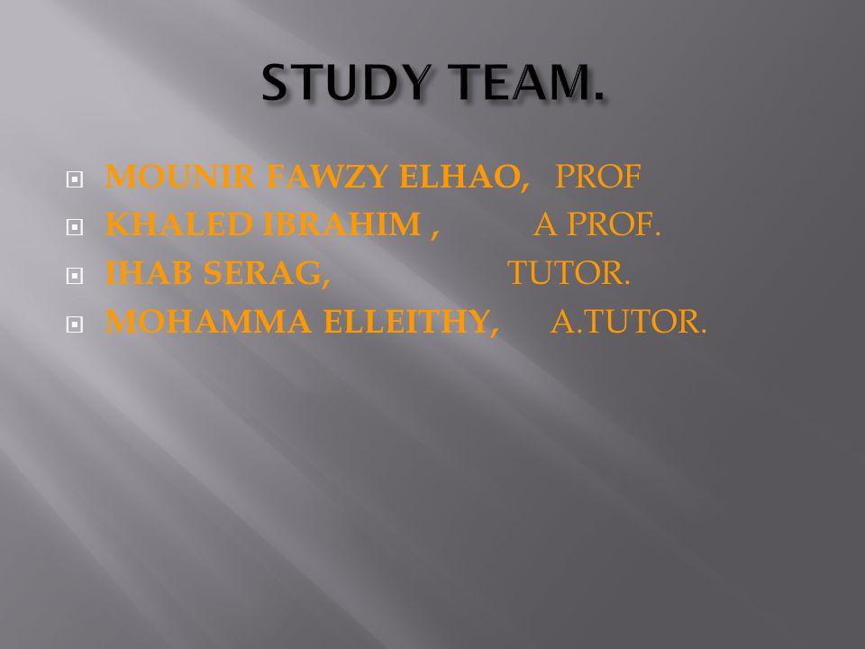 MOUNIR FAWZY ELHAO, PROF KHALED IBRAHIM, A PROF. IHAB SERAG, TUTOR. MOHAMMA ELLEITHY, A.TUTOR.