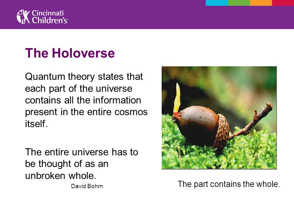 The Holoverse Quantum theory states that each part of the universe contains all the information present in the entire cosmos itself. The entire univer