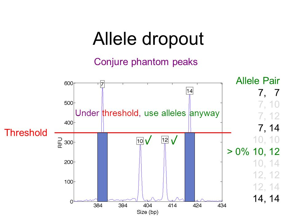 Allele dropout Threshold Under threshold, use alleles anyway Allele Pair 7, 7 7, 10 7, 12 7, 14 10, 10 > 0% 10, 12 10, 14 12, 12 12, 14 14, 14 Conjure phantom peaks