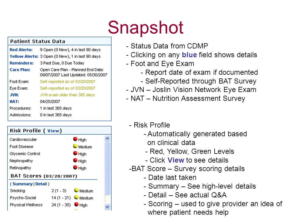 Snapshot - Status Data from CDMP - Clicking on any blue field shows details - Foot and Eye Exam - Report date of exam if documented - Self-Reported th