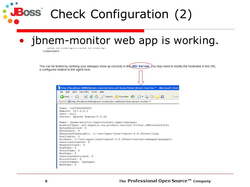 8 The Professional Open Source Company Check Configuration (2) jbnem-monitor web app is working.