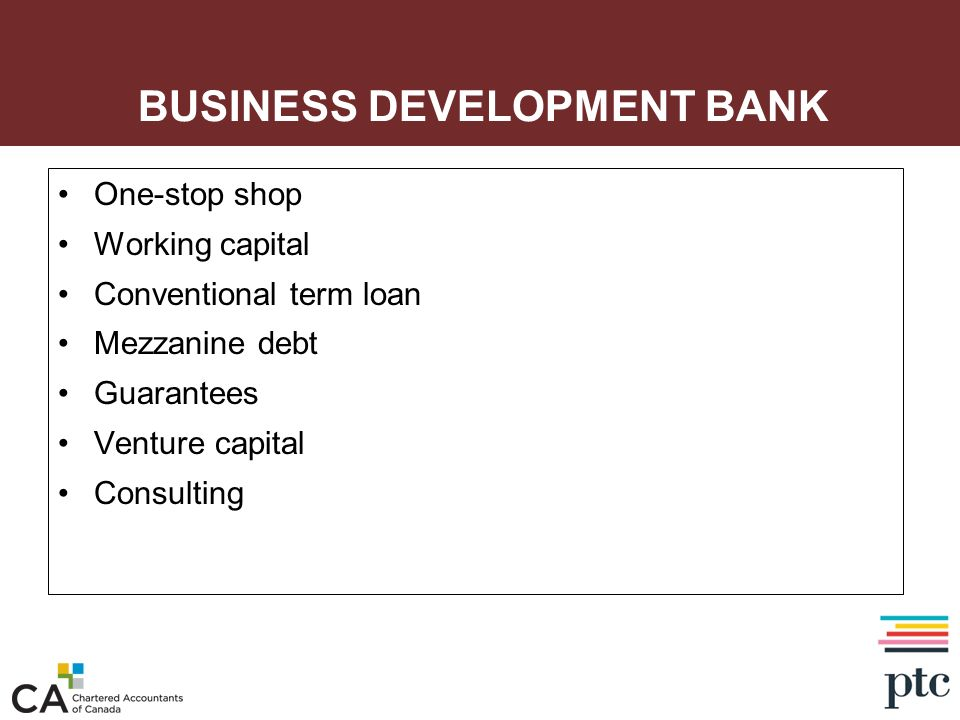 BUSINESS DEVELOPMENT BANK One-stop shop Working capital Conventional term loan Mezzanine debt Guarantees Venture capital Consulting