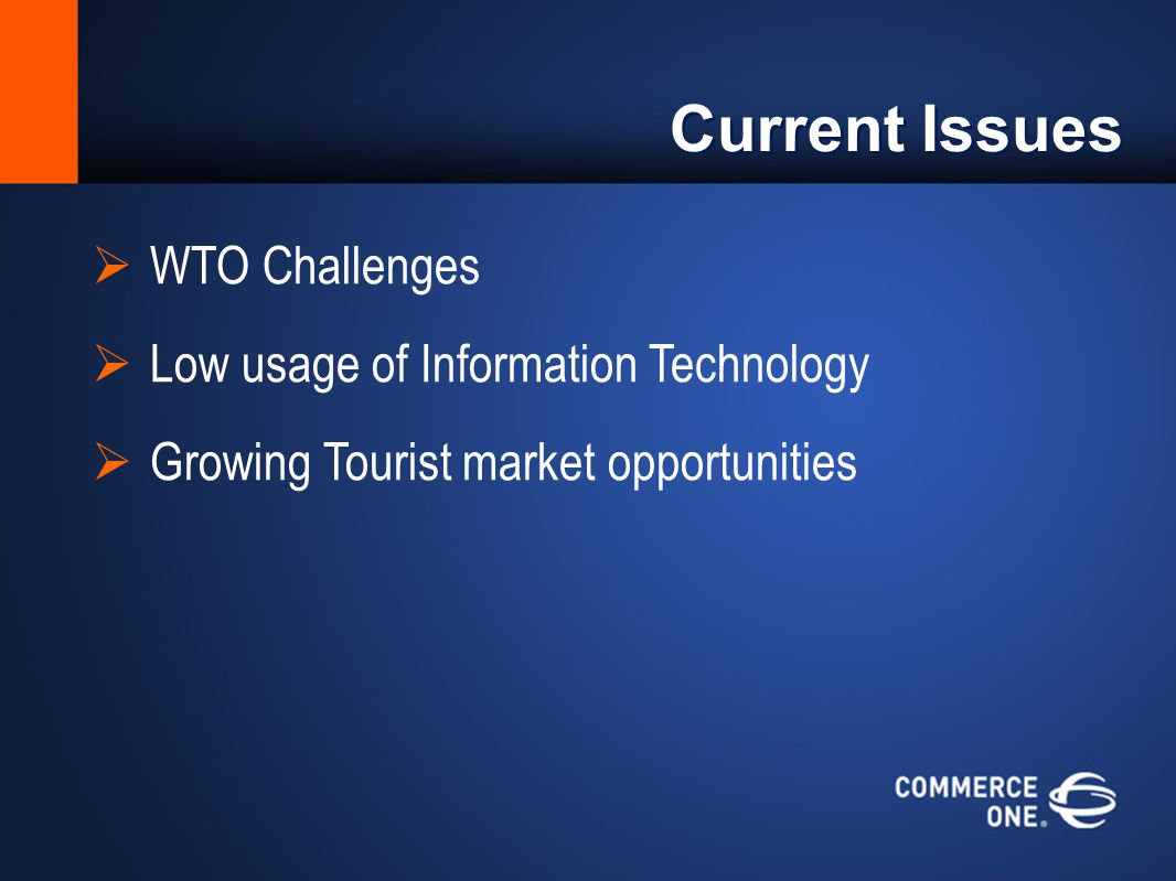 Current Issues WTO Challenges Low usage of Information Technology Growing Tourist market opportunities