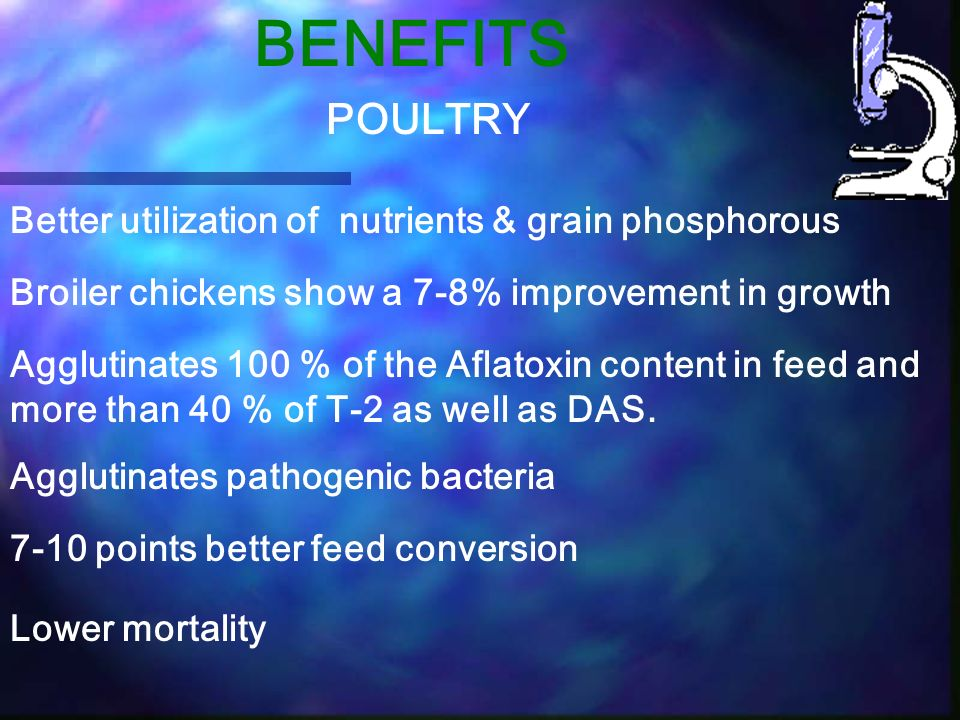 BENEFITS Broiler chickens show a 7-8% improvement in growth Agglutinates 100 % of the Aflatoxin content in feed and more than 40 % of T-2 as well as D