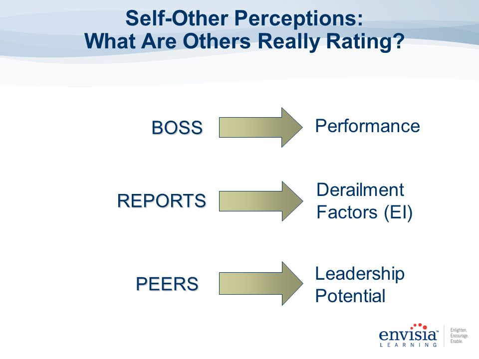 Self-Other Perceptions: What Are Others Really Rating?PEERS REPORTS BOSS Performance Derailment Factors (EI) Leadership Potential
