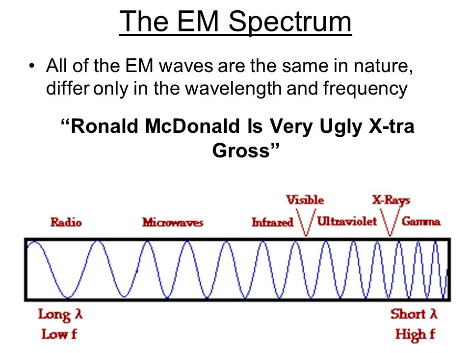 The EM Spectrum All of the EM waves are the same in nature, differ only in the wavelength and frequency Ronald McDonald Is Very Ugly X-tra Gross