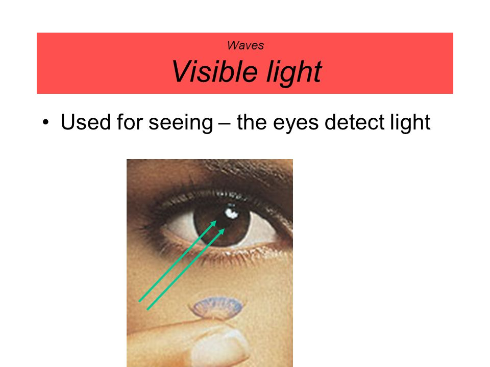 Waves Visible light Used for seeing – the eyes detect light