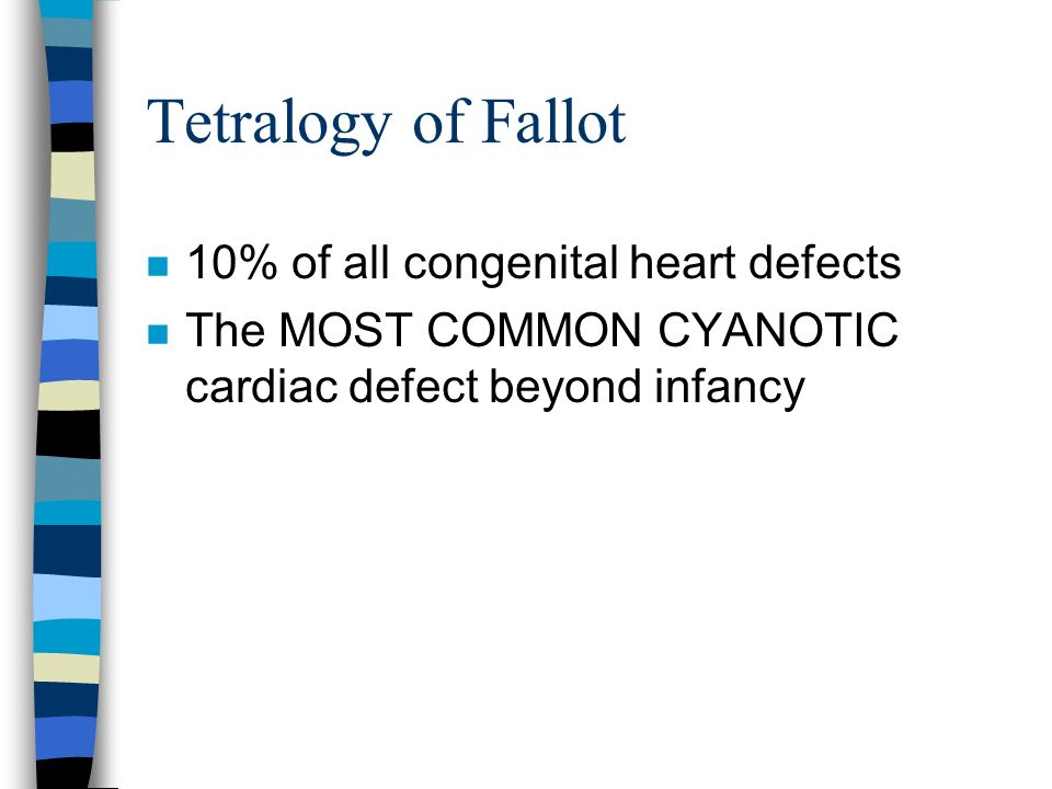 Tetralogy of Fallot n 10% of all congenital heart defects n The MOST COMMON CYANOTIC cardiac defect beyond infancy