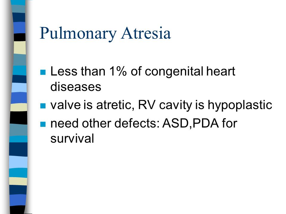 Pulmonary Atresia n Less than 1% of congenital heart diseases n valve is atretic, RV cavity is hypoplastic n need other defects: ASD,PDA for survival