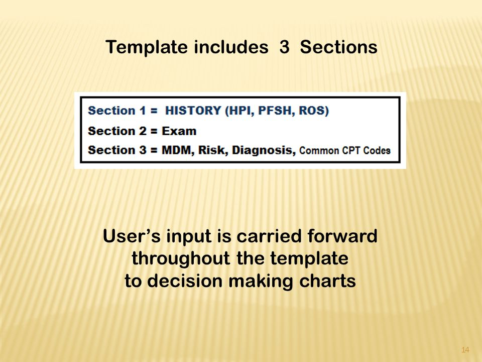 Users input is carried forward throughout the template to decision making charts 14 Template includes 3 Sections