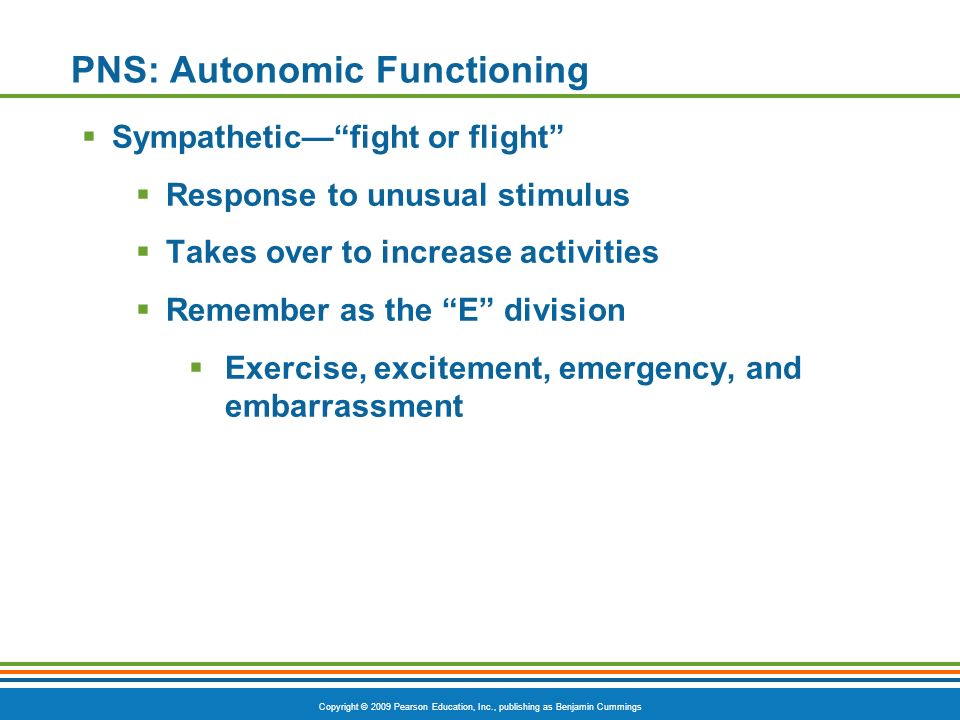 Copyright © 2009 Pearson Education, Inc., publishing as Benjamin Cummings PNS: Autonomic Functioning Sympatheticfight or flight Response to unusual st