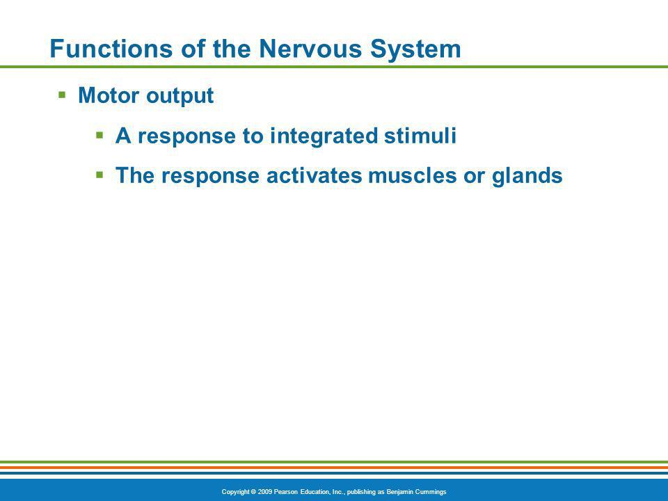 Copyright © 2009 Pearson Education, Inc., publishing as Benjamin Cummings Functions of the Nervous System Motor output A response to integrated stimul