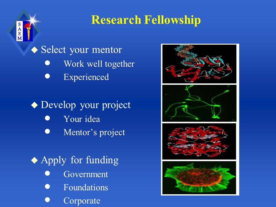 Research Fellowship u Select your mentor Work well together Experienced u Develop your project Your idea Mentors project u Apply for funding Government Foundations Corporate