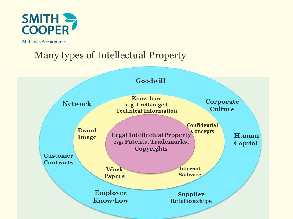 Many types of Intellectual Property Goodwill Network Corporate Culture Employee Know-how Customer Contracts Supplier Relationships Legal Intellectual Property e.g.