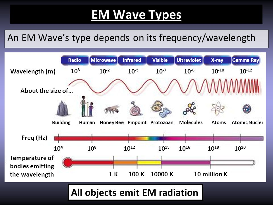 EM Wave Types An EM Waves type depends on its frequency/wavelength 10 3 10 -2 10 -5 10 -7 10 -8 10 -10 10 -12 Wavelength (m) Freq (Hz) Temperature of