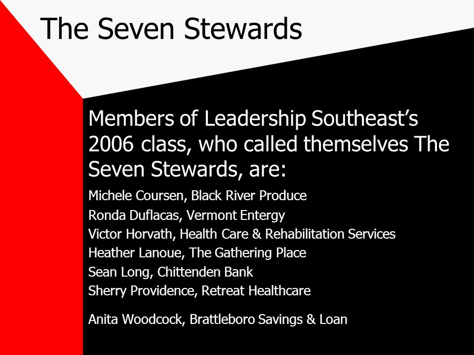 The Seven Stewards Members of Leadership Southeasts 2006 class, who called themselves The Seven Stewards, are: Michele Coursen, Black River Produce Ro
