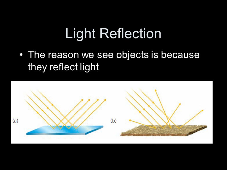 Light Reflection The reason we see objects is because they reflect light