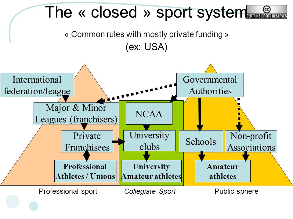 The « closed » sport system « Common rules with mostly private funding » (ex: USA) Governmental Authorities NCAA Non-profit Associations Major & Minor Leagues (franchisers) Private Franchisees International federation/league Professional Athletes / Unions University clubs University Amateur athletes Amateur athletes Schools Collegiate SportProfessional sportPublic sphere