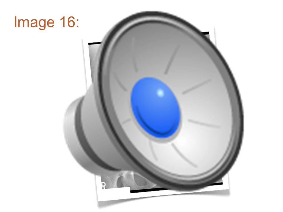 Image 15: