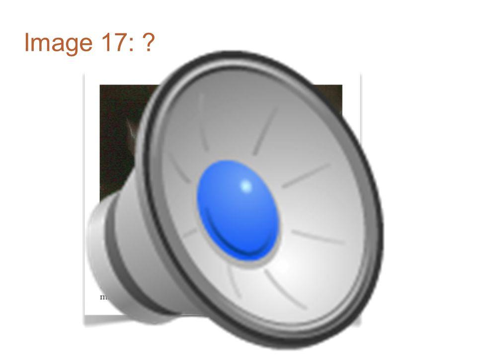 Image 16: