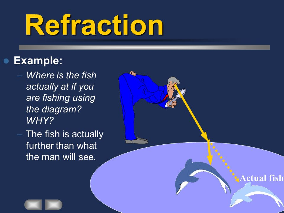 Refraction Example: –Where is the fish actually at if you are fishing using the diagram? WHY? –The fish is actually further than what the man will see
