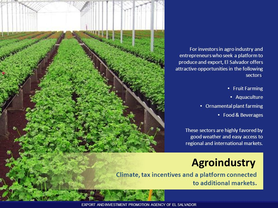 EXPORT AND INVESTMENT PROMOTION AGENCY OF EL SALVADOR For investors in agro industry and entrepreneurs who seek a platform to produce and export, El S