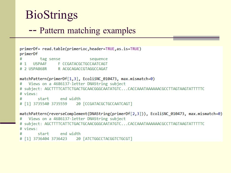 BioStrings -- Pattern matching examples