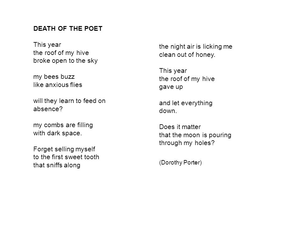 DEATH OF THE POET This year the roof of my hive broke open to the sky my bees buzz like anxious flies will they learn to feed on absence.