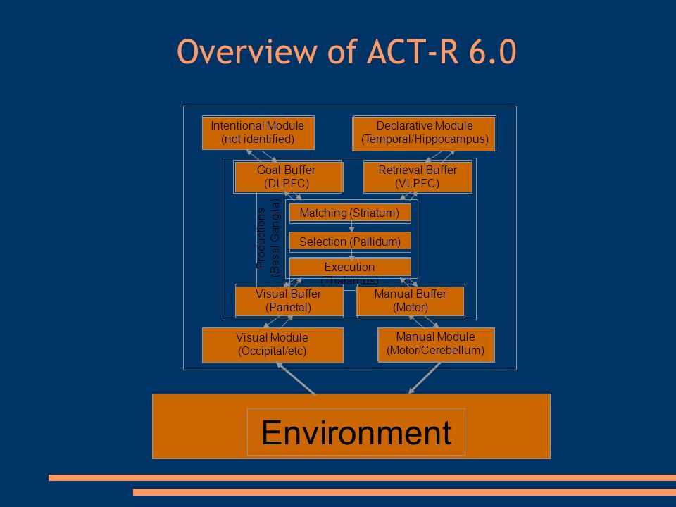 Overview of ACT-R 6.0 Environment Productions (Basal Ganglia) Retrieval Buffer (VLPFC) Matching (Striatum) Selection (Pallidum) Execution (Thalamus) Goal Buffer (DLPFC) Visual Buffer (Parietal) Manual Buffer (Motor) Manual Module (Motor/Cerebellum) Visual Module (Occipital/etc) Intentional Module (not identified) Declarative Module (Temporal/Hippocampus)