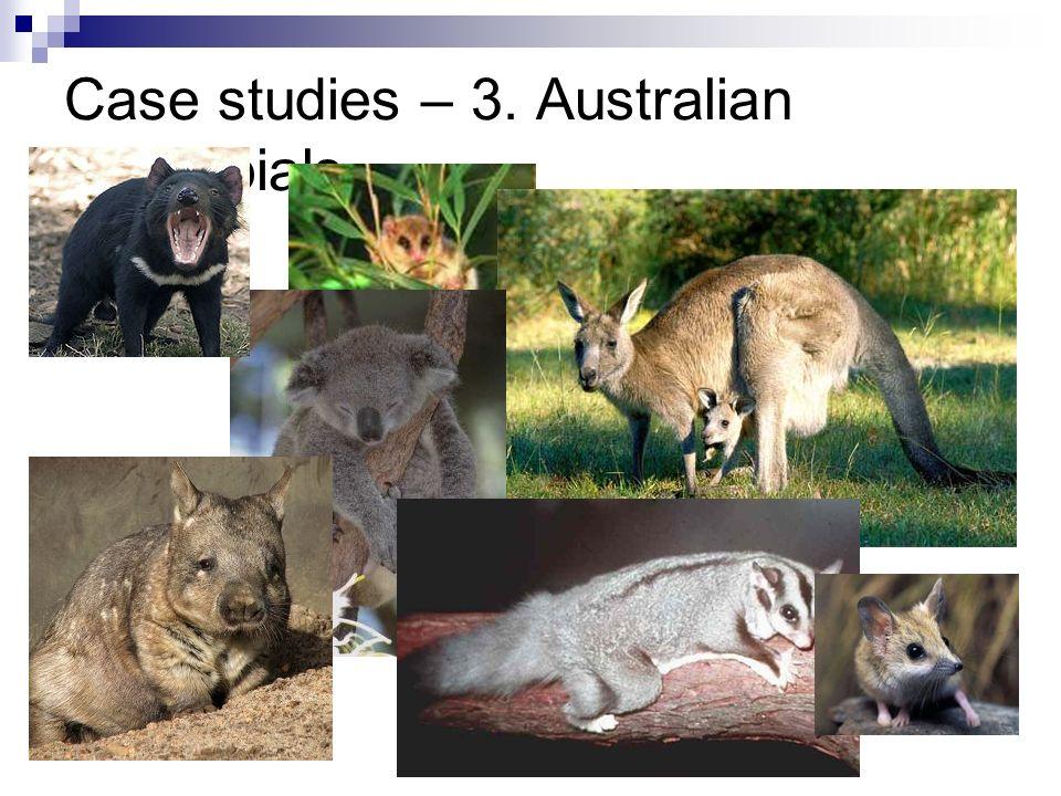 Case studies – 3. Australian Marsupials