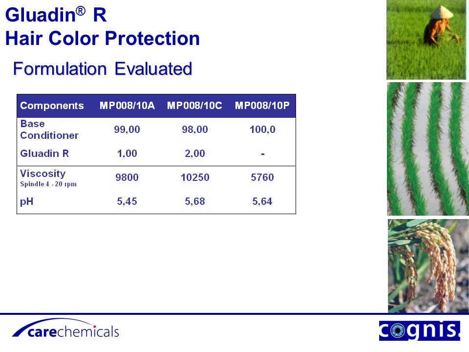 Formulation Evaluated Gluadin ® R Hair Color Protection