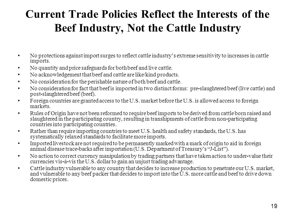 19 Current Trade Policies Reflect the Interests of the Beef Industry, Not the Cattle Industry No protections against import surges to reflect cattle industrys extreme sensitivity to increases in cattle imports.