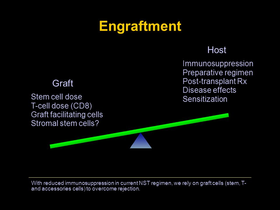 Engraftment With reduced immunosuppression in current NST regimen, we rely on graft cells (stem, T- and accessories cells) to overcome rejection. Graf