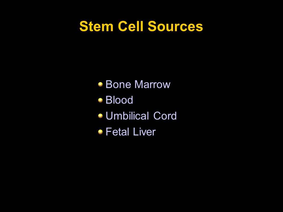 Stem Cell Sources Bone Marrow Blood Umbilical Cord Fetal Liver