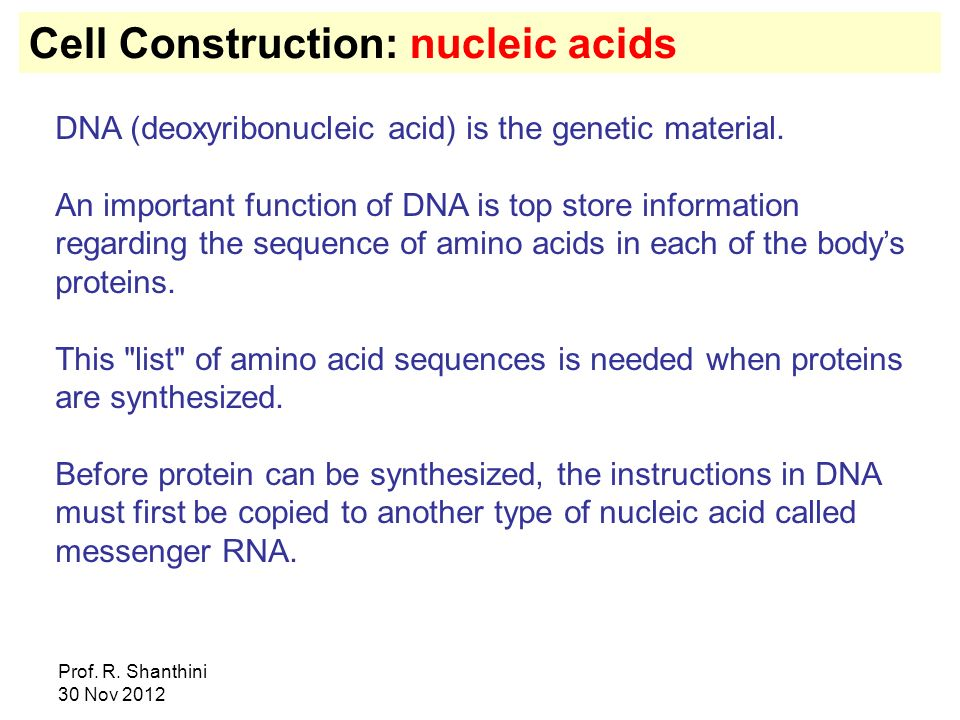 Prof. R. Shanthini 30 Nov 2012 Cell Construction: nucleic acids DNA (deoxyribonucleic acid) is the genetic material. An important function of DNA is t