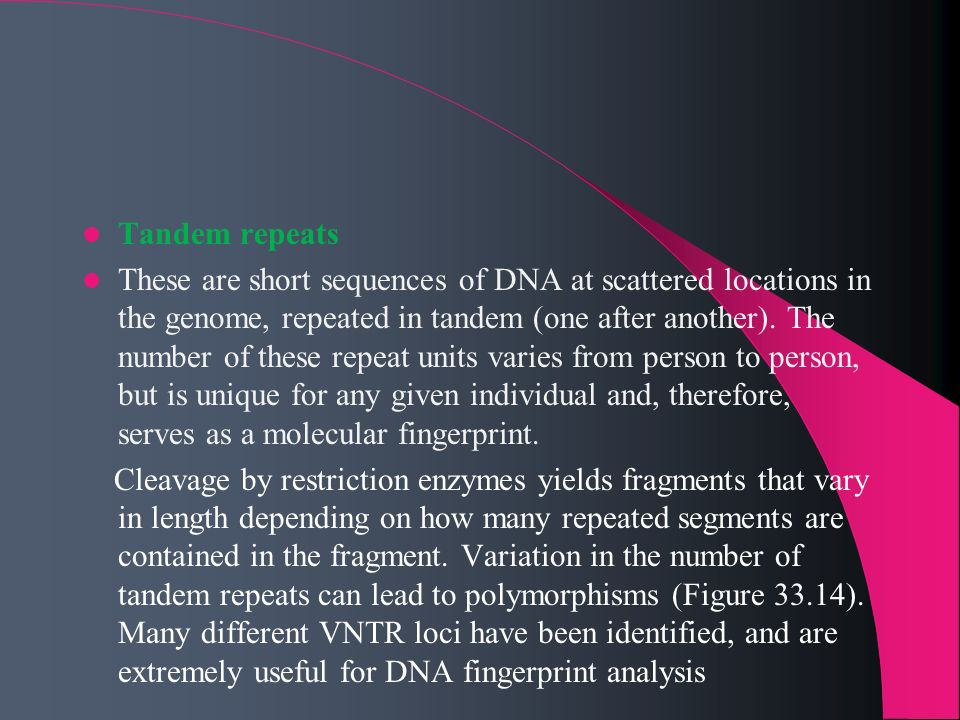 Tandem repeats These are short sequences of DNA at scattered locations in the genome, repeated in tandem (one after another). The number of these repe