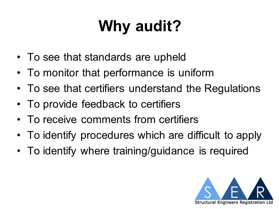 The audit procedures